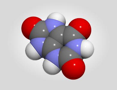 Храносмилателни ензими, метаболитни ензими, висока киселинност, ниско pH