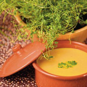 Супа от тиква и джинджифил