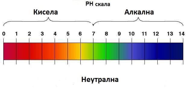 Нивото на киселинност или алкалност, обозначавано с pH, в течностите и тъканите на тялото ни зависи от количеството на водородните йони H+
