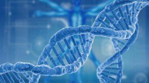 рак човешки гени