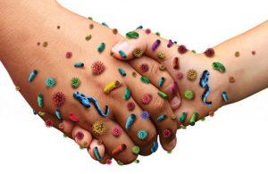 рак папиломвирус бактерии